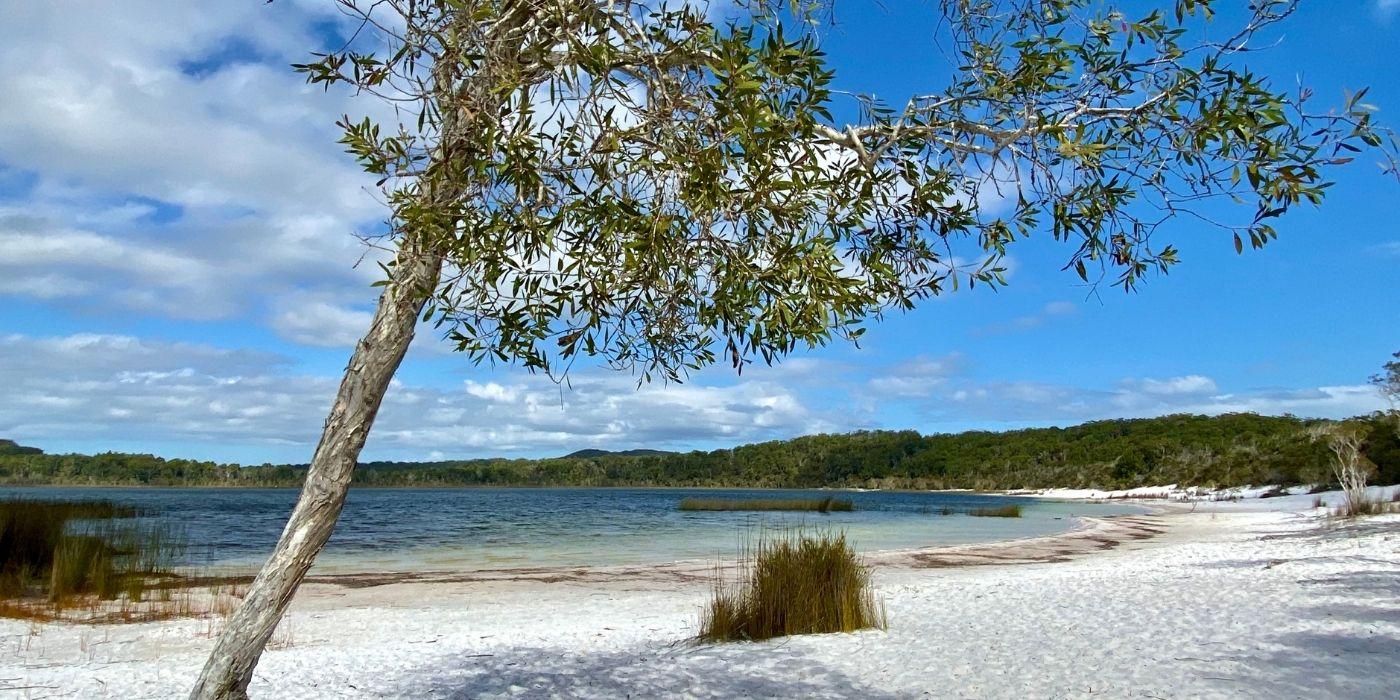 K'Gari Fraser Island Tours