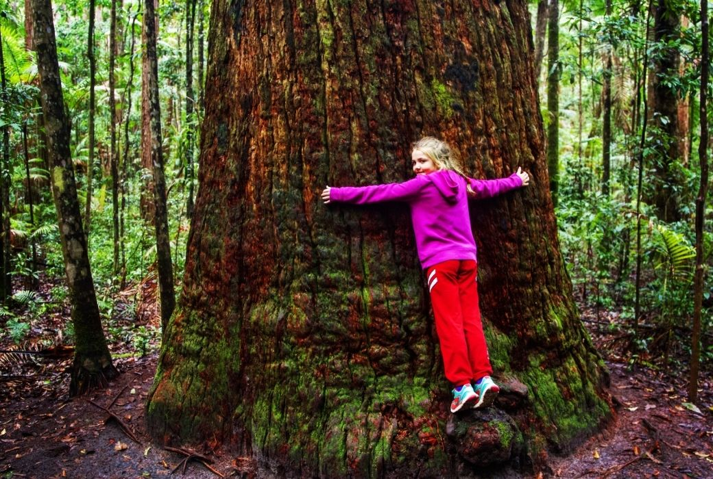 Fraser Island tours with kids