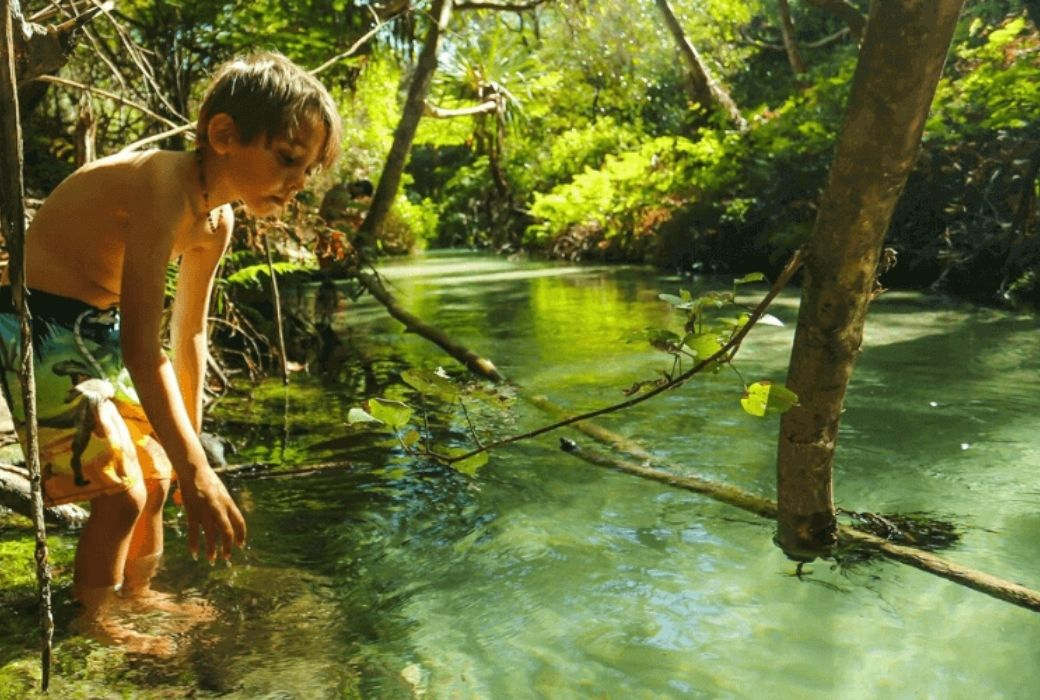 Fraser Island with kids