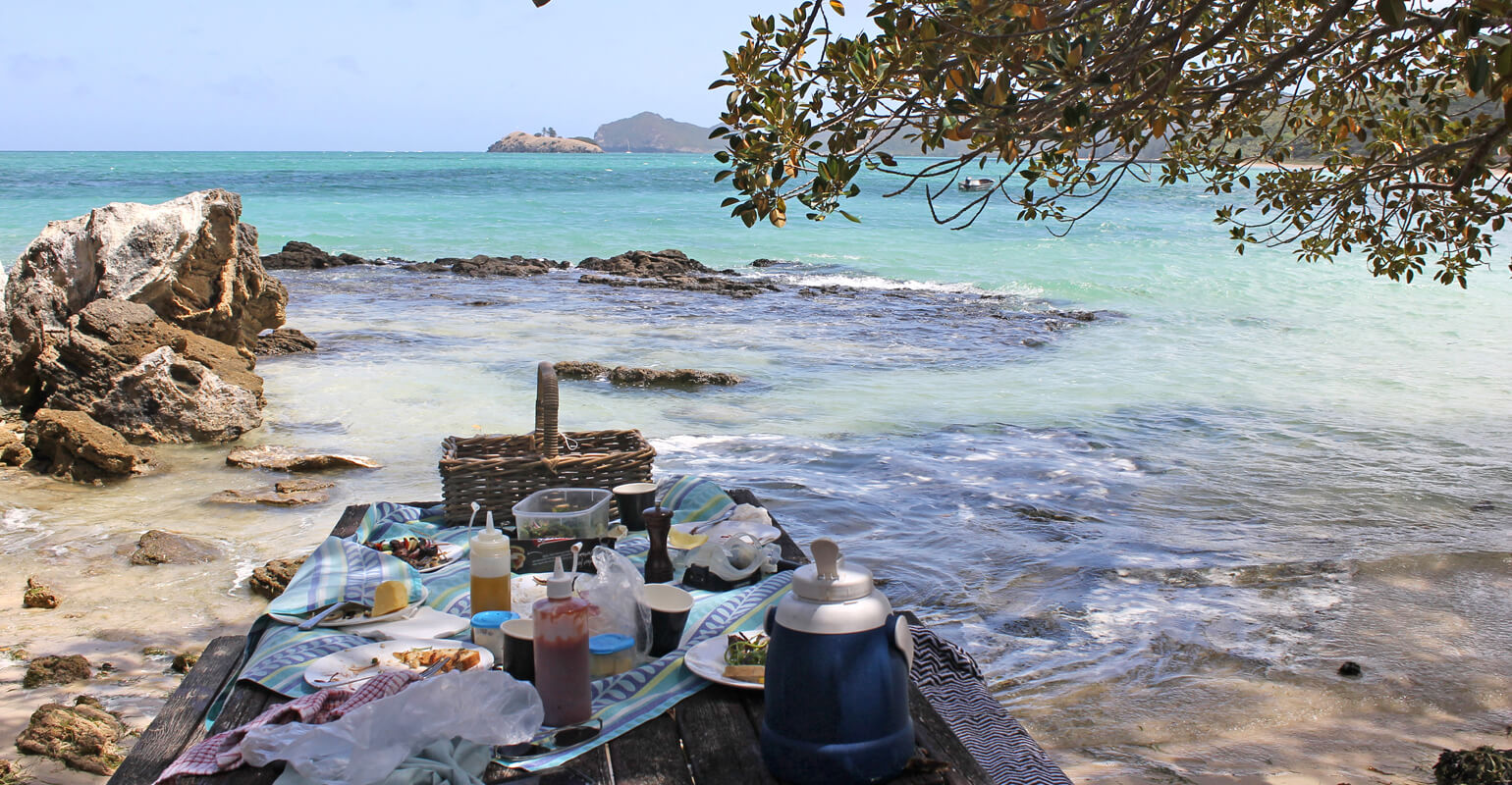 Picnic by the lagoon, Lord Howe Island
