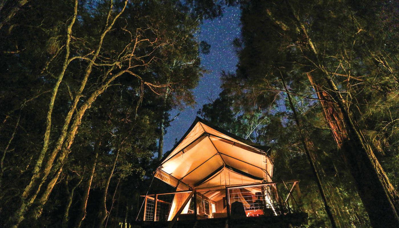 Glamping Australia: paperbark camp