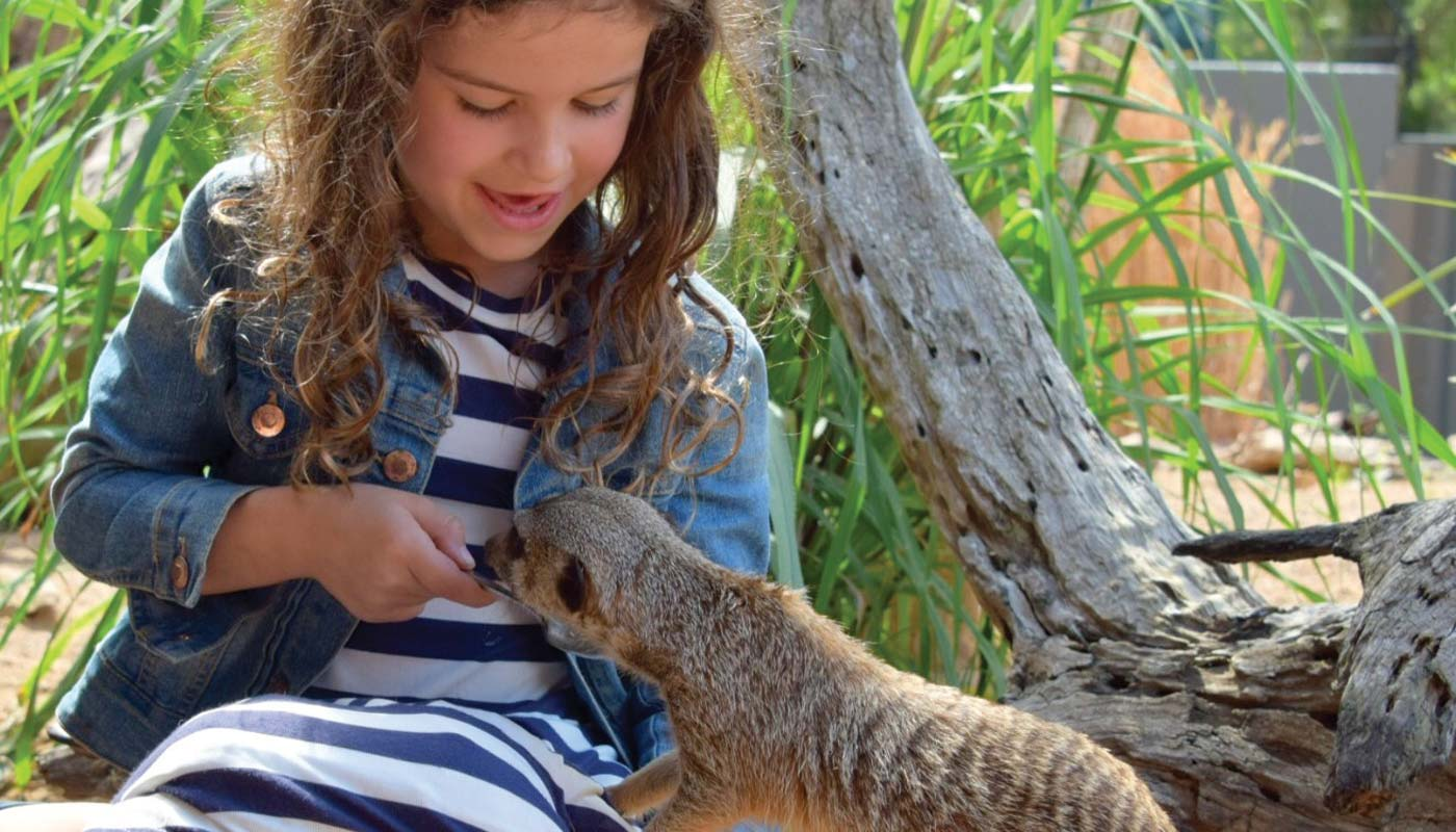 Why families love Port Macquarie