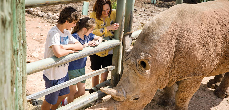 Monarto Zoo, South Australia