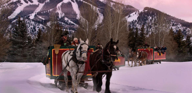 Horses in Sun Valley