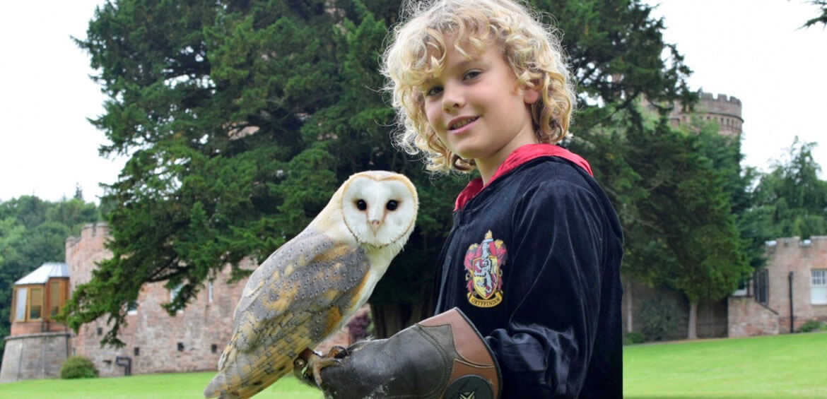Owl encounter at Dalhousie Castle