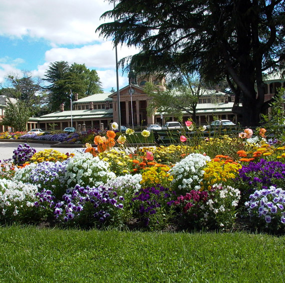 country town camping bathurst