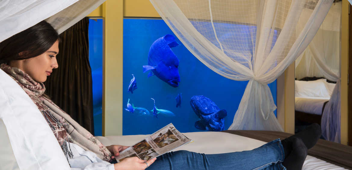 Jamala Wildlife Lodge aquarium room