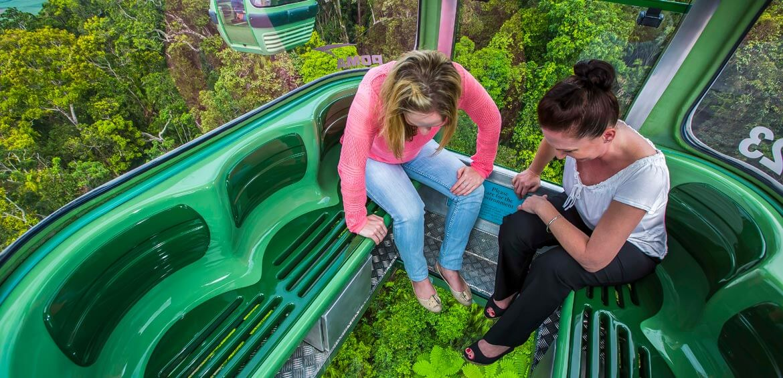 Glass floor, Skyrail Rainforest Cableway