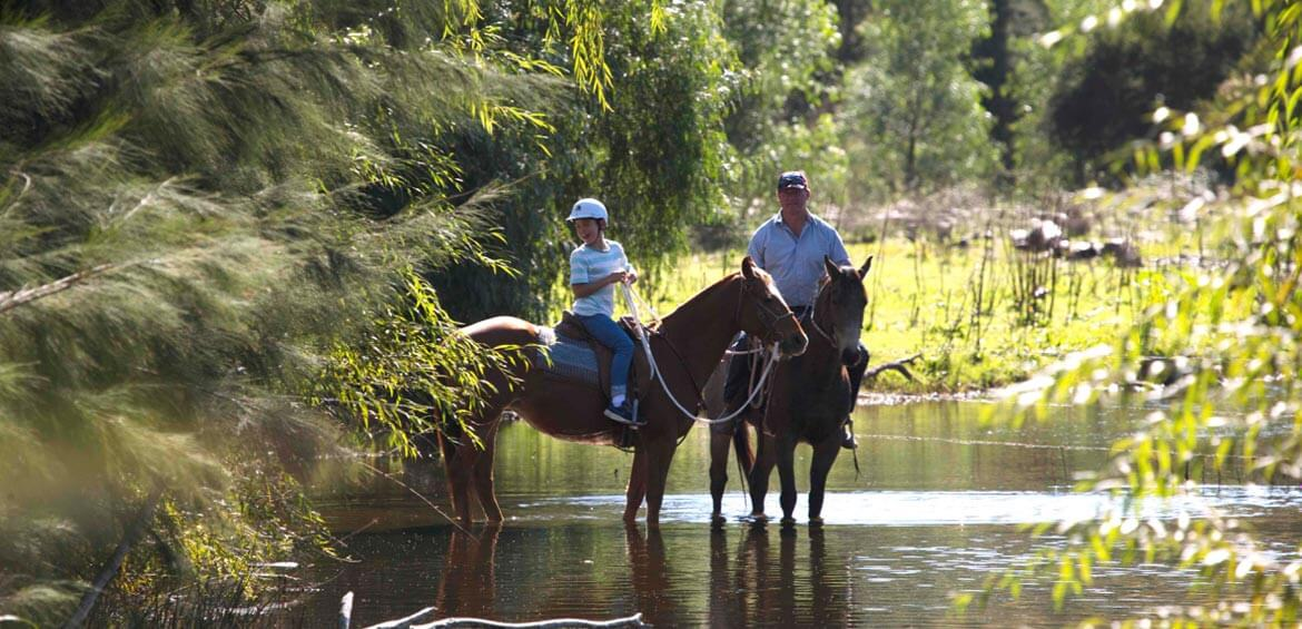 Horse riding in the Upper Hunter