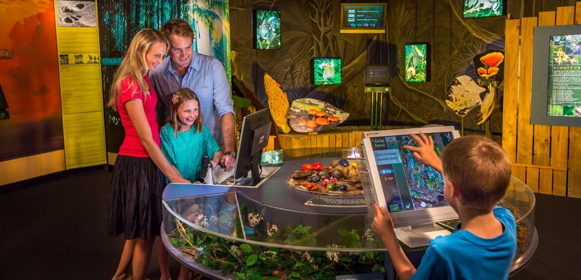 Inter Centre Family, Skyrail Rainforest Cableway