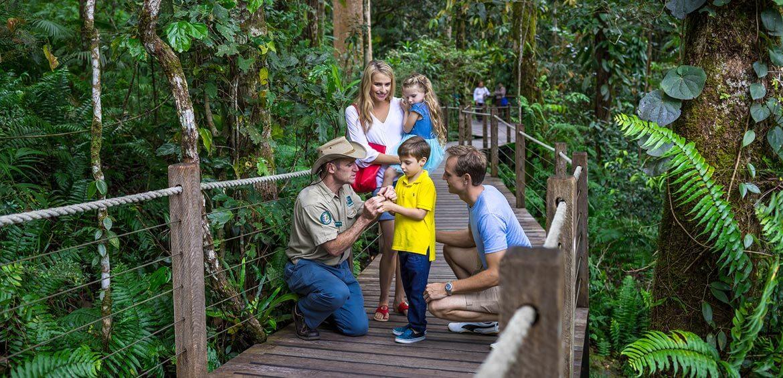 Ranger Tour, Skyrail Rainforest Cableway
