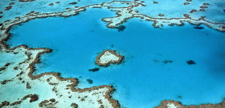 The breathtaking Heart Reef
