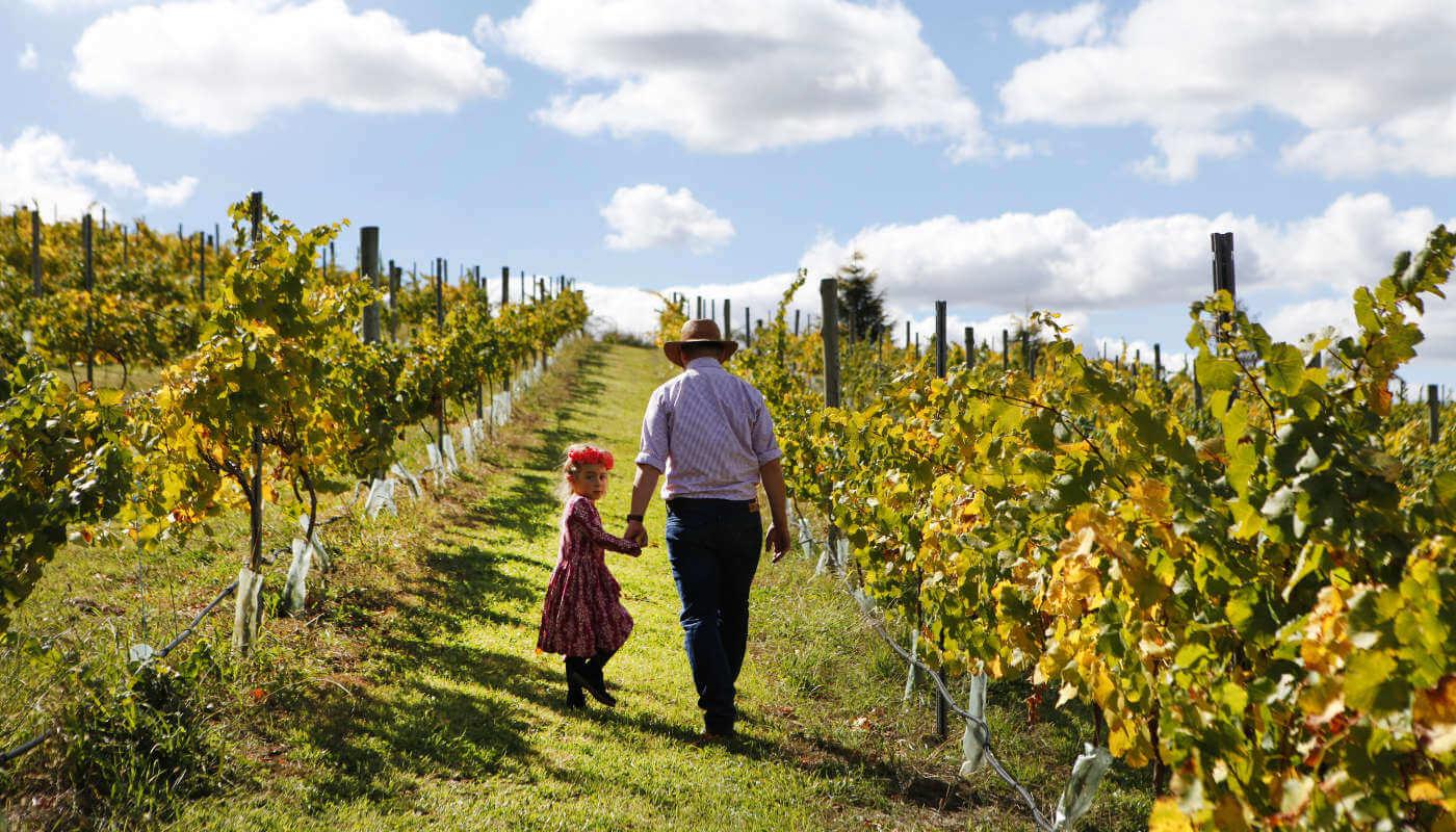 family winery
