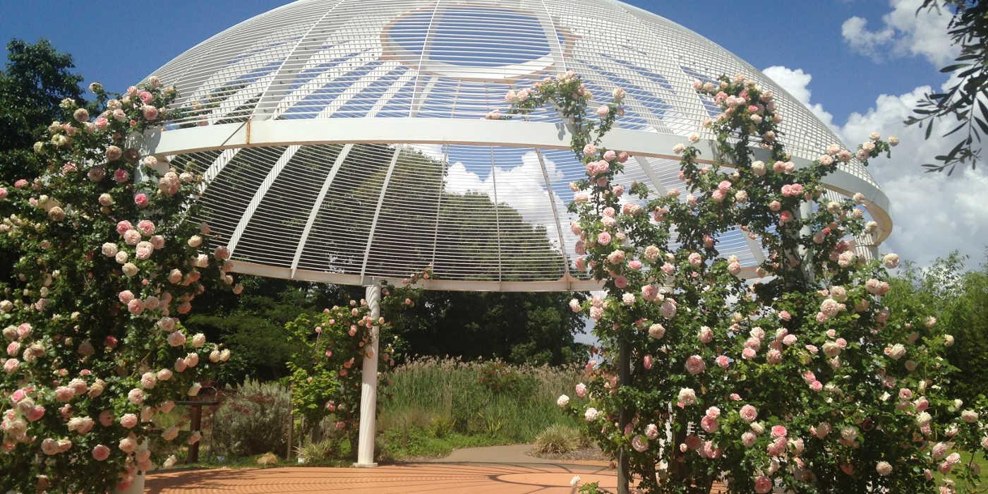 Dubbo Regional Botanic Garden