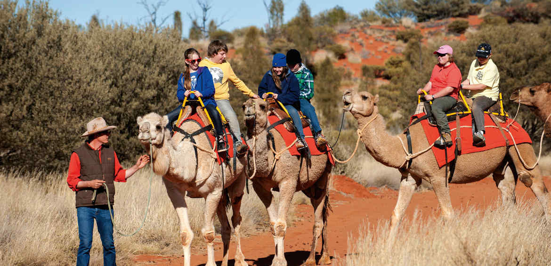 Camel Uluru