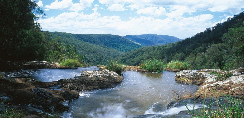Springbrook National Park