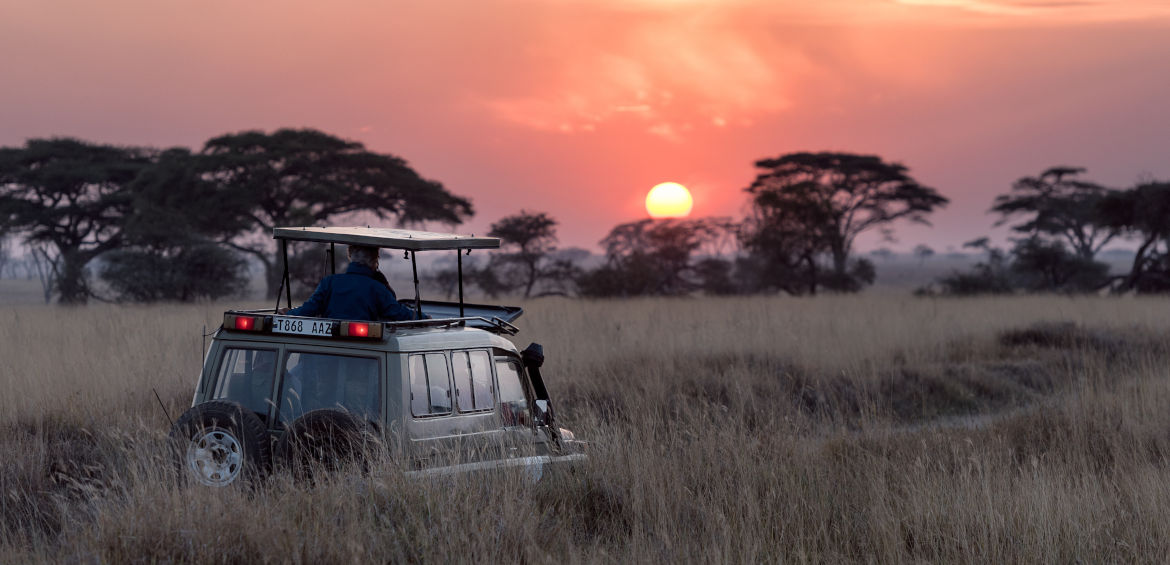 game drive africa