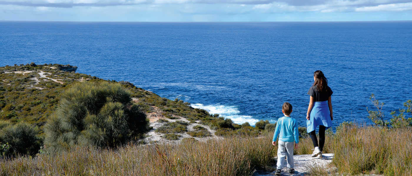 Whale watching on the NSW South Coast
