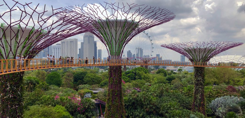 singapore travel bubble