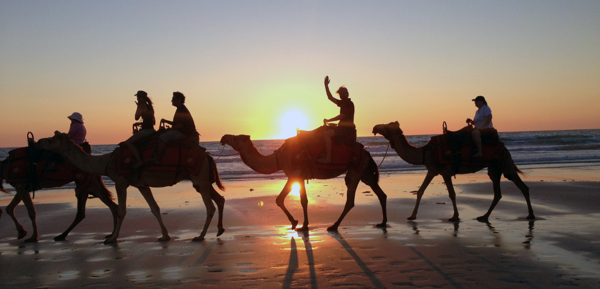 Riding camels on the beach through Broome © Tourism Western Australia