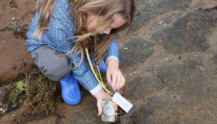 Searching for shells © Bron Leeks