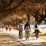 Canberra family holiday: where to play, where to stay