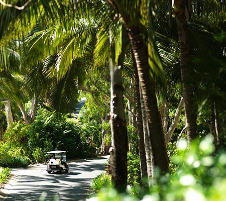 Access buggy at Reef View Hotel Hamilton Island