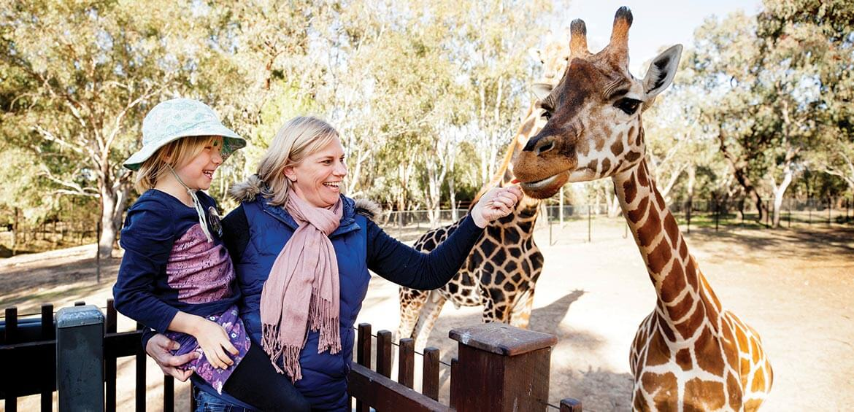 Taronga Western Plains Zoo, Dubbo