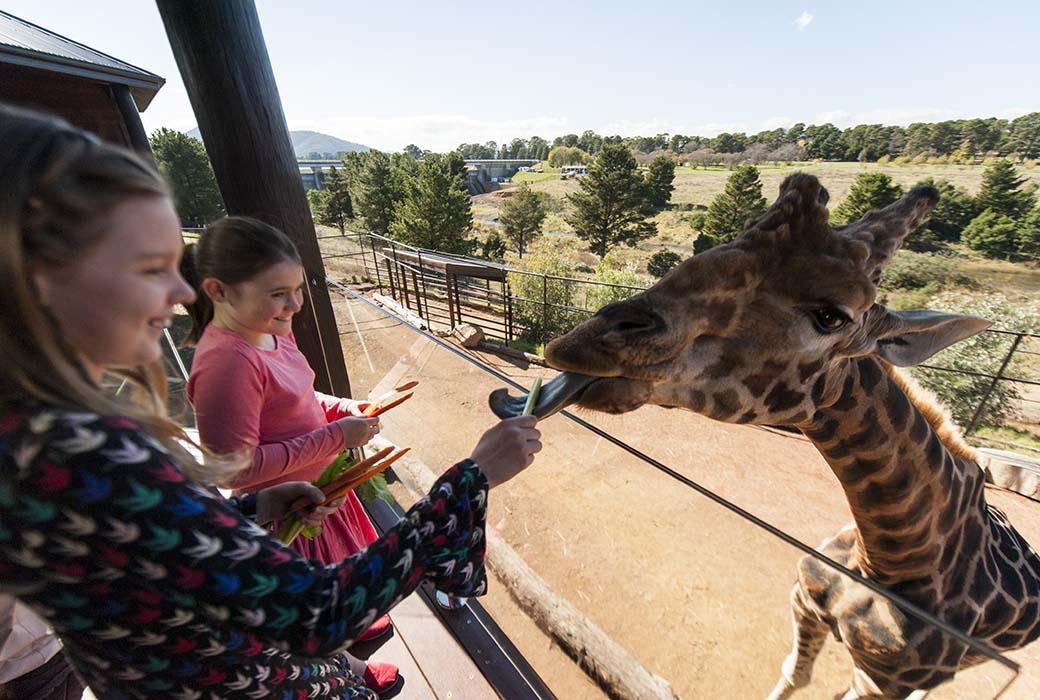 National Zoo & Aquarium