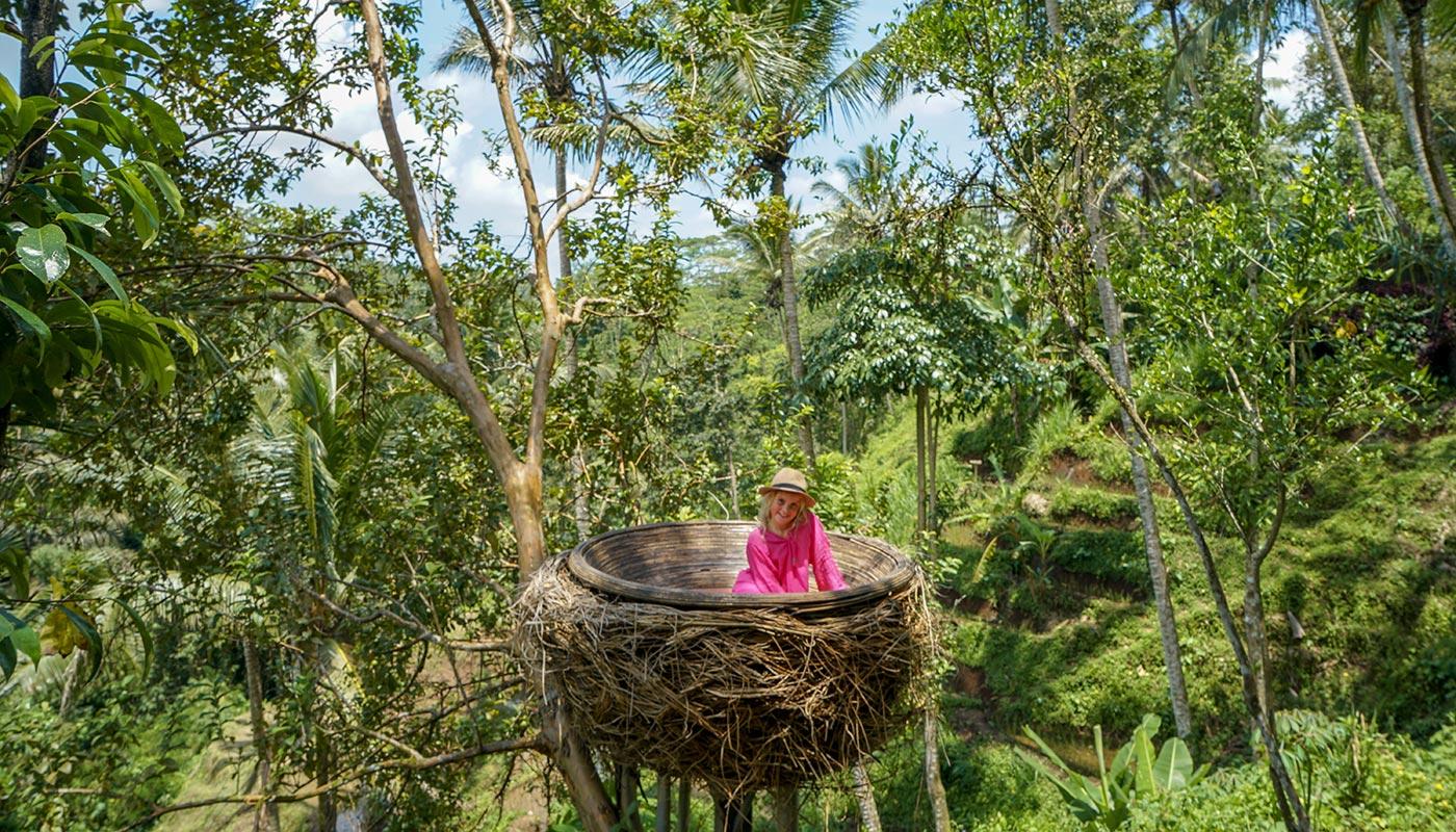 Kids love climbing the nests at Bali Swing