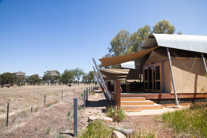Zoofari, Taornga Western Plains Zoo, Dubbo, New South Wales