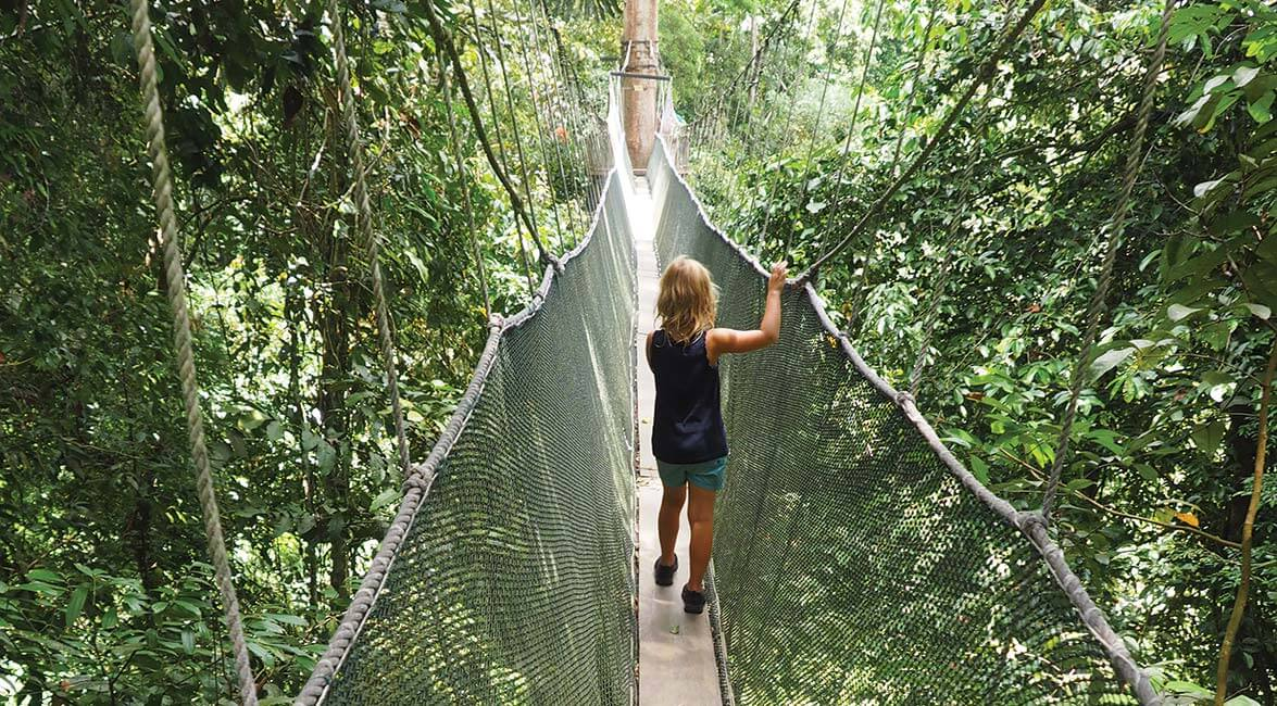 Exploring Sabah's jungles