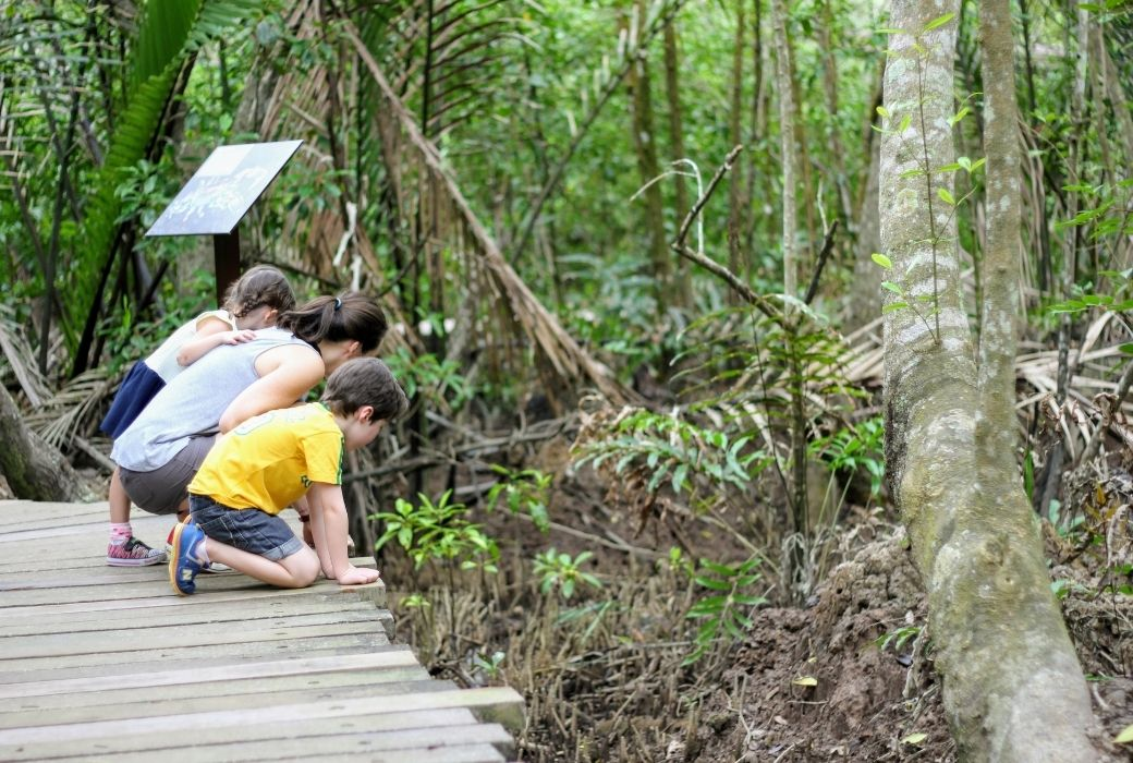 Things to do in Singapore with kids Palau Ubin