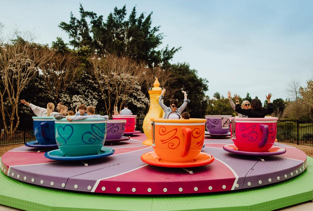 Twisty Teacups at Hunter Valley Gardens this winter