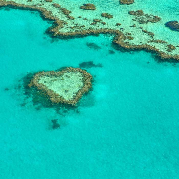 heart reef queensland