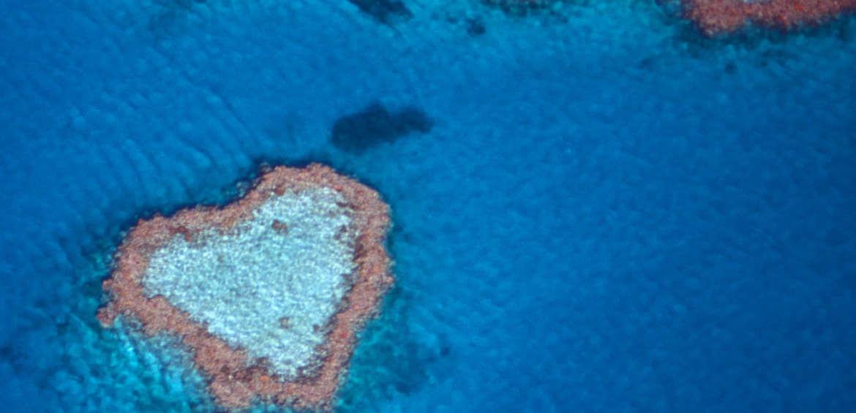 Great Barrier Reef, Heart, Eco-Friendly, Love