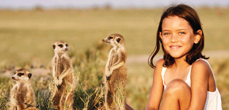 Africa, Safari, Meerkat, Family