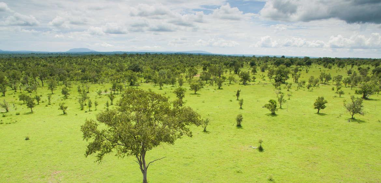 Azura Selous, Tanzania, safari, Africa