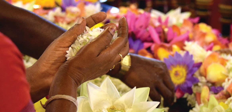 Temple of the Sacred Tooth, Sri Lanka, Religion, Flowers