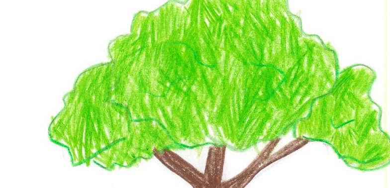 Eco-Friendly, Tree, Hand drawn, child-like