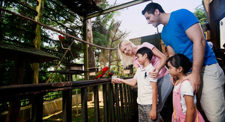 KL Bird Park, Malaysia