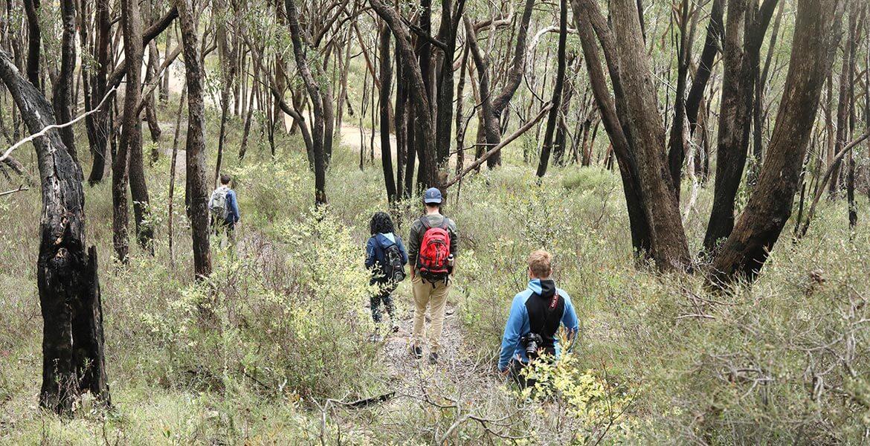 Mt Lofty YHA bush walk family