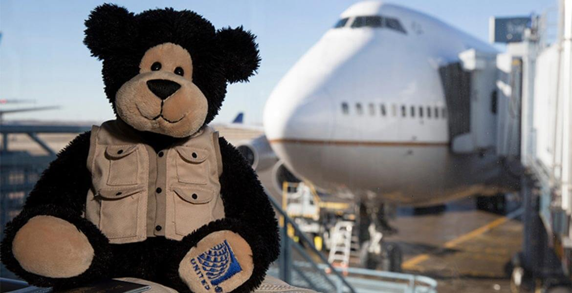 United Airlines adventure bear