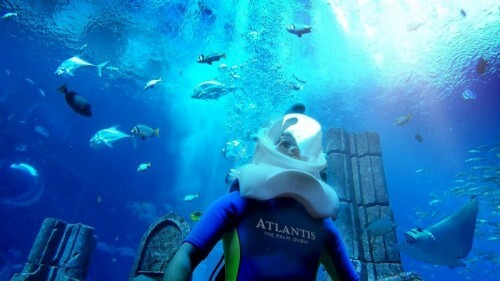 Aquatrek Xtreme at Atlantis, The Palm