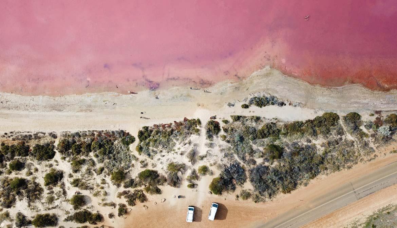 Algae gives Hutt Lagoon its extraordinary pink hue
