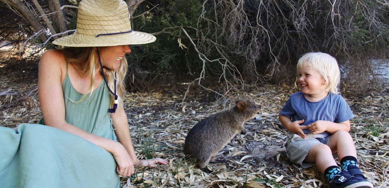 Meeting a curious quokka on Rottnest Island