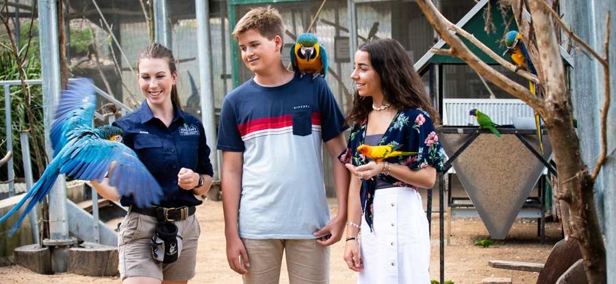 Maleny Botanic Gardens and Bird World