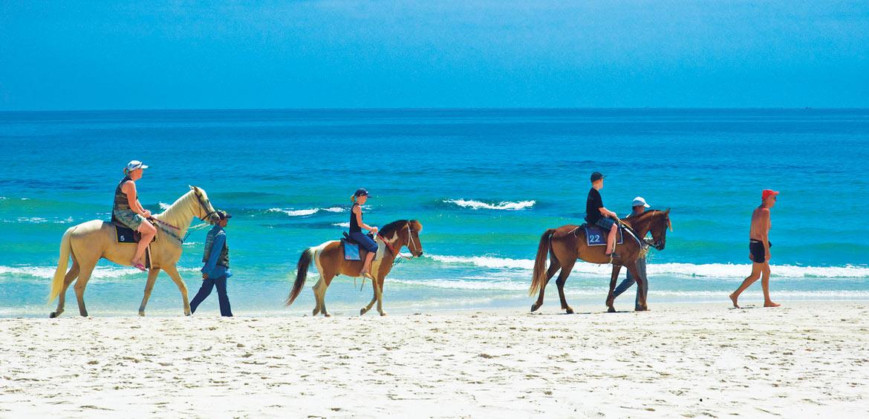 Horse riding in Hua Hin