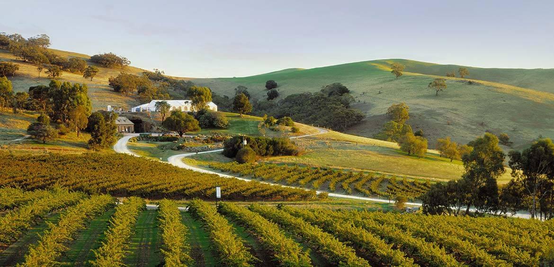Bethany Wines, Barossa Valley