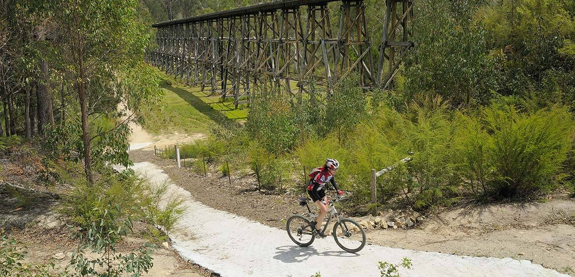 Cyclist on the East Gippsland Rail Trail